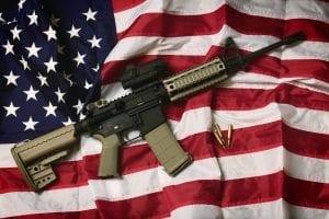 AR-15 vs America